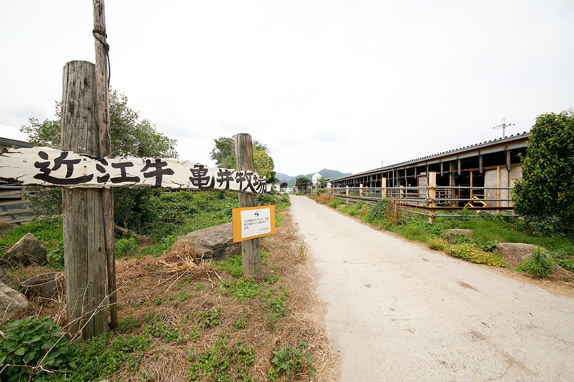 まる亀こうし牧場の歴史